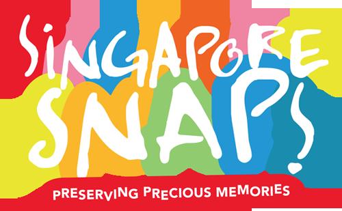 Singapore Snaps 2014 Logo